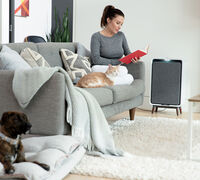 Vacuums + Air Purifiers: A Match Made in Homecare Heaven