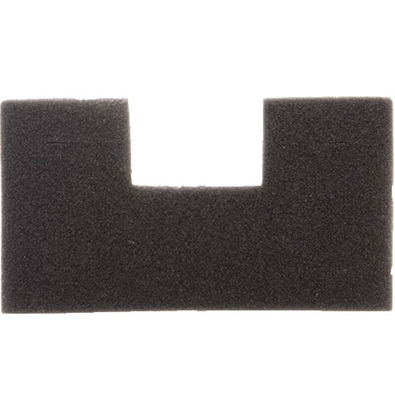 Post Motor Filter Zing 1613055 BISSELL Vacuum Cleaner Parts