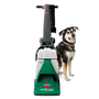 Big Green® Machine Professional Carpet Cleaner