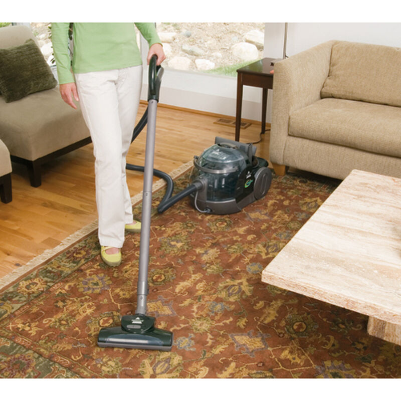 Big Green Complete Carpet Cleaner Rug Cleaning