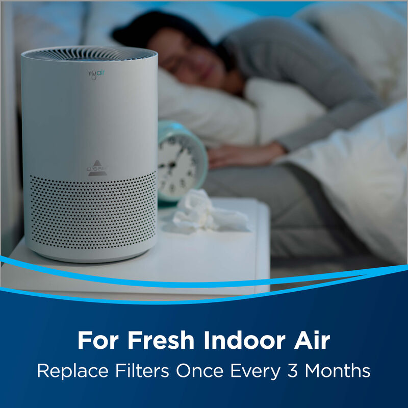 BISSELL MYair Personal Air Purifier Replacement Filter 2801 Indoor Air
