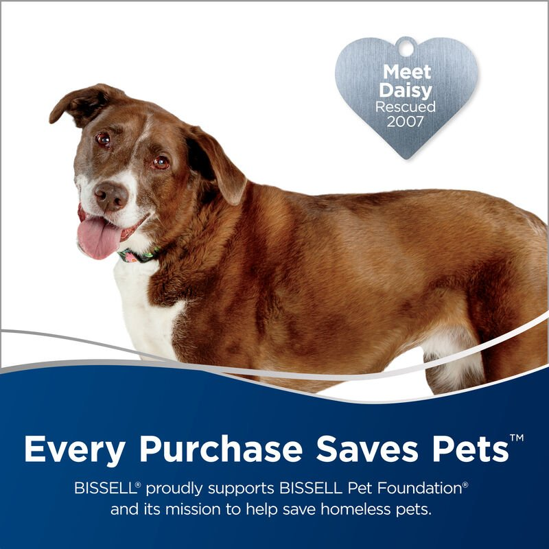 Text: Meet Daisy rescued 2007. Every Purchase Saves Pets. BISSELL Proudly supports BISSELL Pet Foundation and its mission to help save homeless pets.