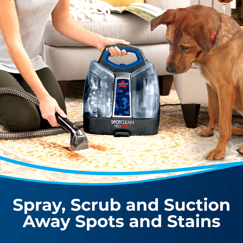 """3"""" Tough Stain Tool 2036651 Spray, Scrub and Suction Away Spots and Stains. Image of person cleaning stain on carpet with dog nearby"""
