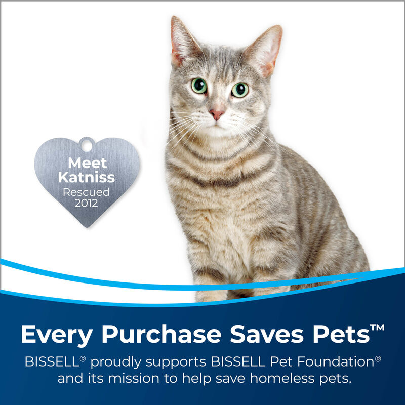 """3"""" Tough Stain Tool 2036651 Meet Katniss Rescued 2012. Every Purchase Saves Pets. BISSELL proudly supports BISSELL Pet Foundation and its mission to help save homeless pets."""