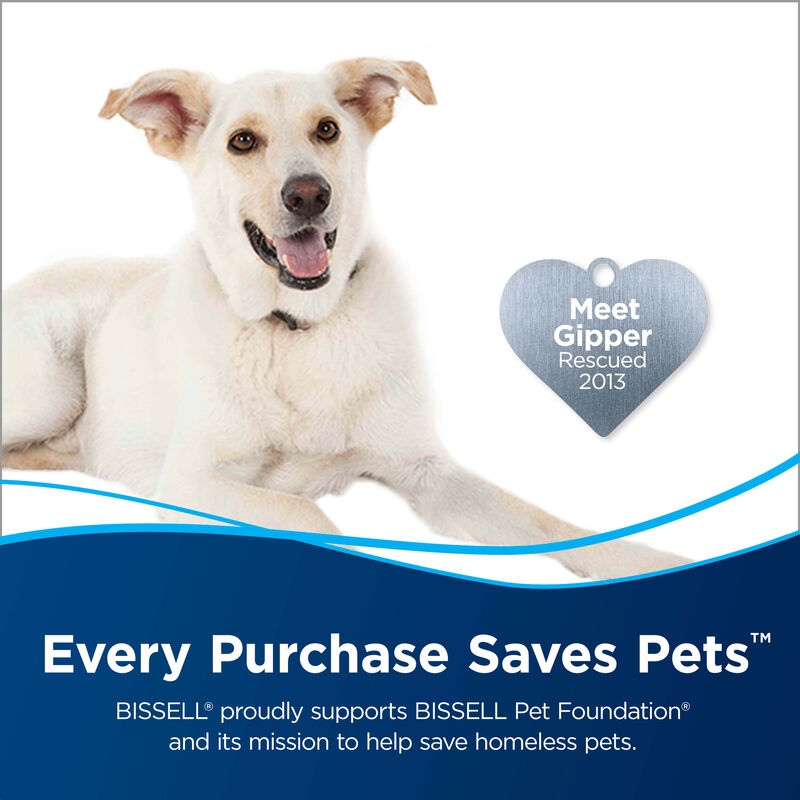 CrossWave Multi Surface Wet Dry Vac Wood Floor Brush Roll 1608022 Save Pets