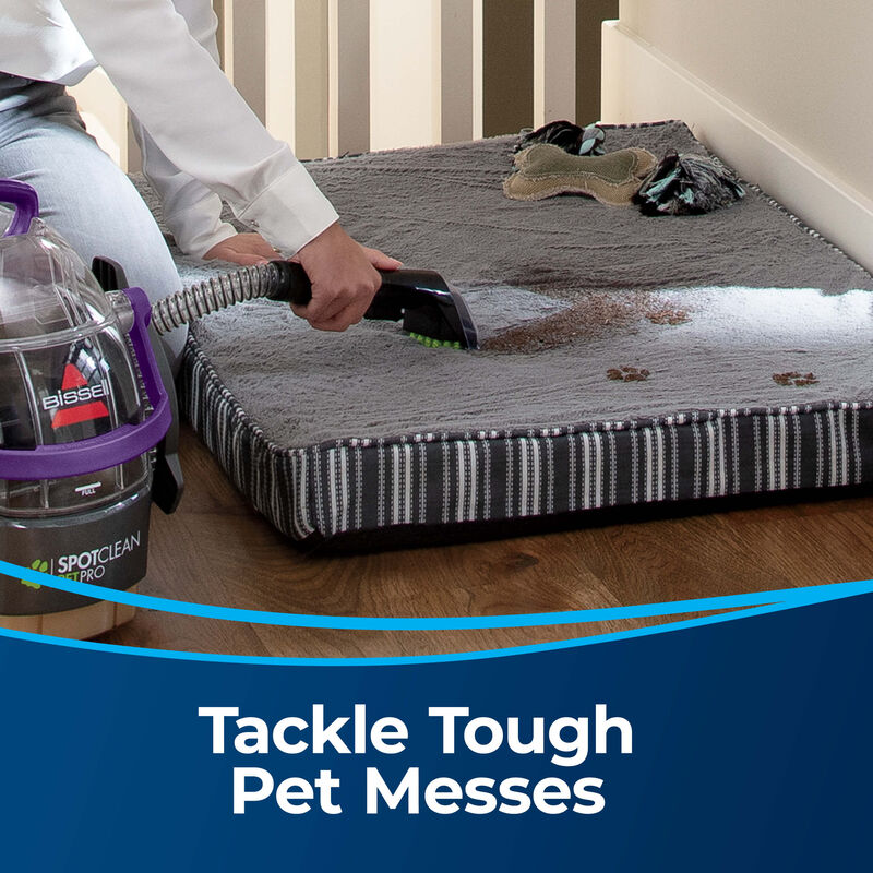 """3"""" Tough Stain Tool 2036651 Tackle Tough Pet Messes. Person cleaning pet bed stains"""